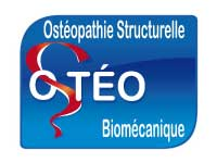 osteo structurelle biomécanique